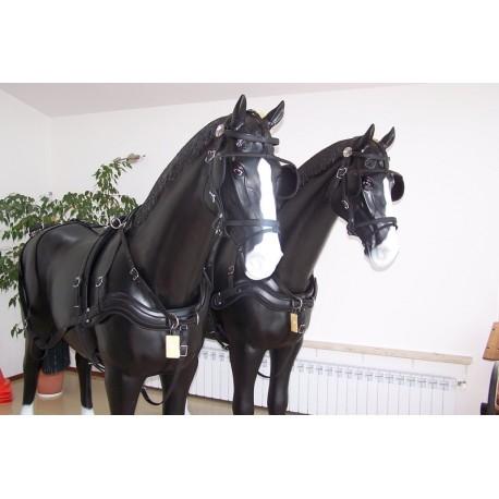 Harnais noir biotane cheval Arden
