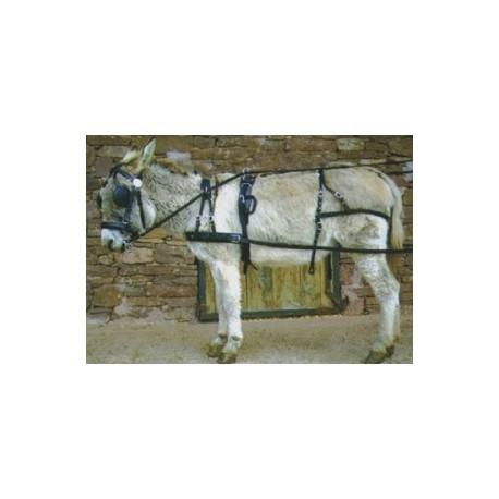 Harnais pour ânes ou poneys simple ou double